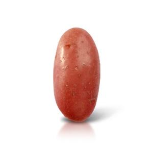 patata rossa tds